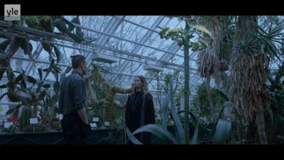 Maantyttäret - tv-series Karppi. fake plant
