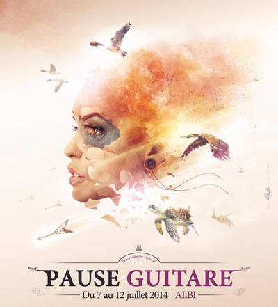 Will B. Photographie - festival pause guitare 2014