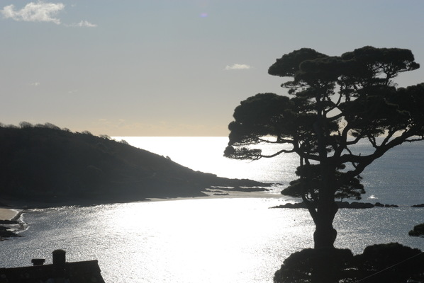 Margaret Denning Art & Photography - Sunny Cove Salcombe