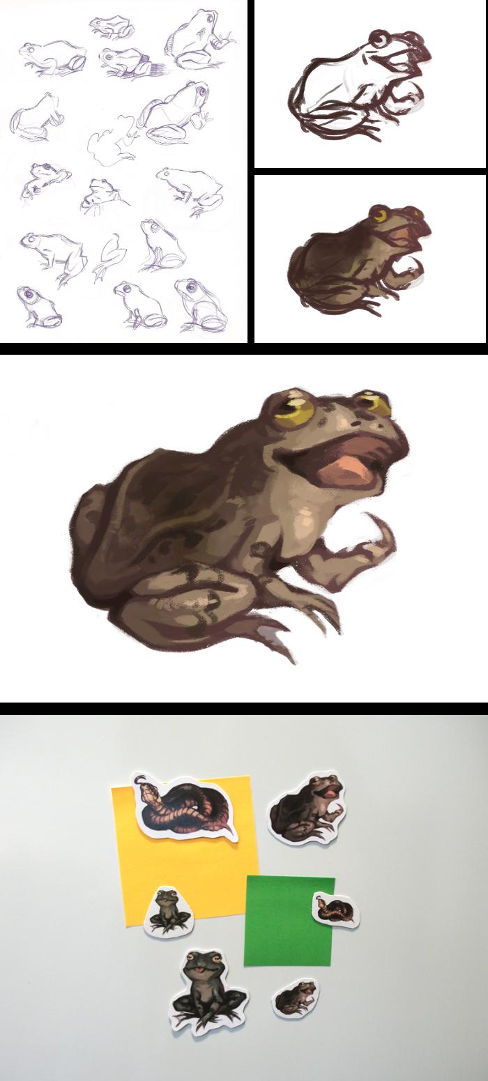 Emmi Nääppä - Eläintarroja ja -magneetteja taidekujilla myytäviksi. Aloitan piirtämällä sammakoita mallista, jotta pystyn toistamaan niitä persoonallisesti kopioimatta yhdestä tietystä referenssikuvasta. Photoshop