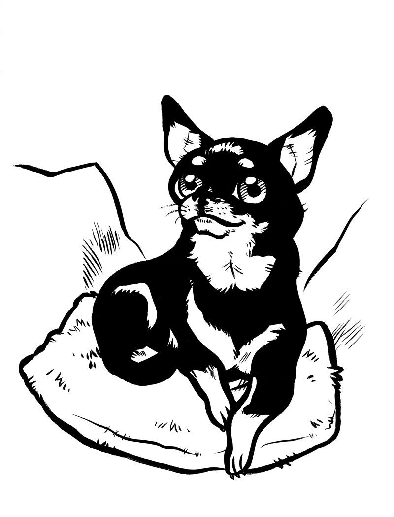 Emmi Nääppä - Muotokuva koirasta. Tilaustyö yksityisasiakkaalle. Pyrin saamaan kuvaan mallin persoonaa. Sivellin ja muste