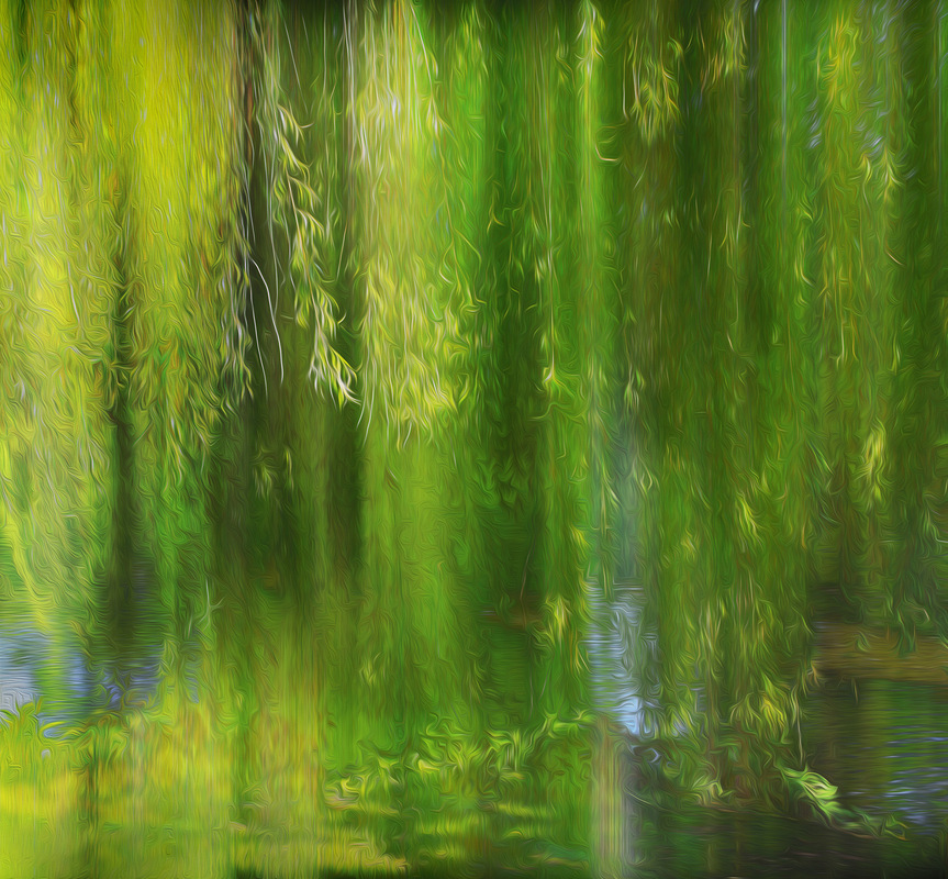Creative Bytes Images - Weeping Willow Abstract (Digital Fine Art)