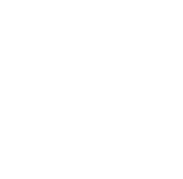 Lionel reyboz