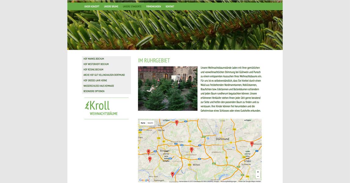 HANNA ZÄNKER - Kroll Weihnachtsbäume, Website