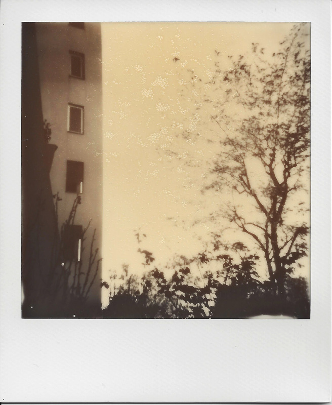 Charline Mahroug - Epinay - Octobre 2013 - extérieur