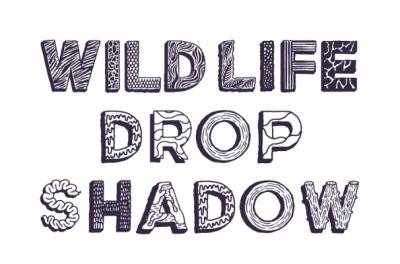 Studio Moross - Wild Life Typeface
