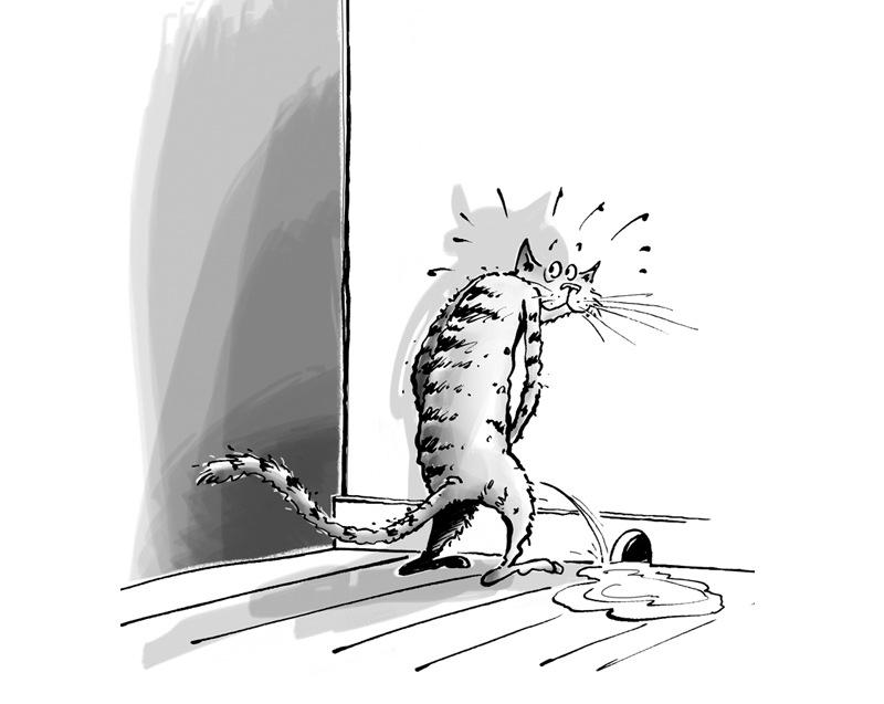 christophe besse - Le chat qui arrose tout du sol au plafond, c'est un thème abordé et décortiqué dans « Mon chat sur le divan » éditions Larousse 2014. Le texte est très savoureux : … on parfume l'atmosphère de son odeur, celle qui n'appartient qu'à nous et ceux qui sont aux alentours prennent note du message qu'on a émis … Le dessin est déjà presque fait !