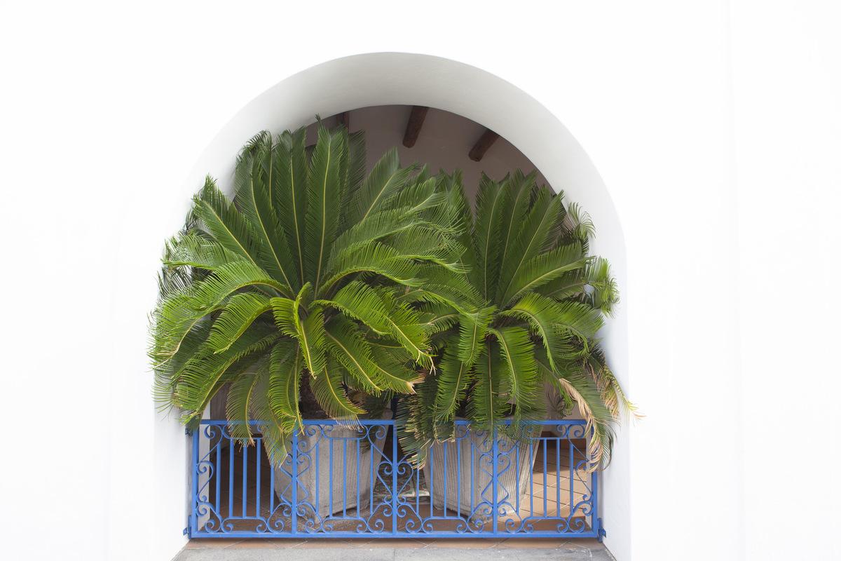 Luciana Caputo - Alledaags wit. De tinten van Stromboli. Eolische eilanden 2017