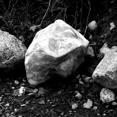 Sven Fritz - Pine and granite