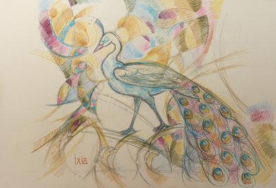 IXIA Artiste - Paon 38,5 x 28,5 cm Mine de plomb et crayons de couleurs sur papier