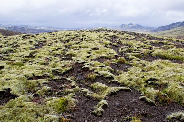 Leyla Kazim | Photography - Innstidalur Hengill - Iceland