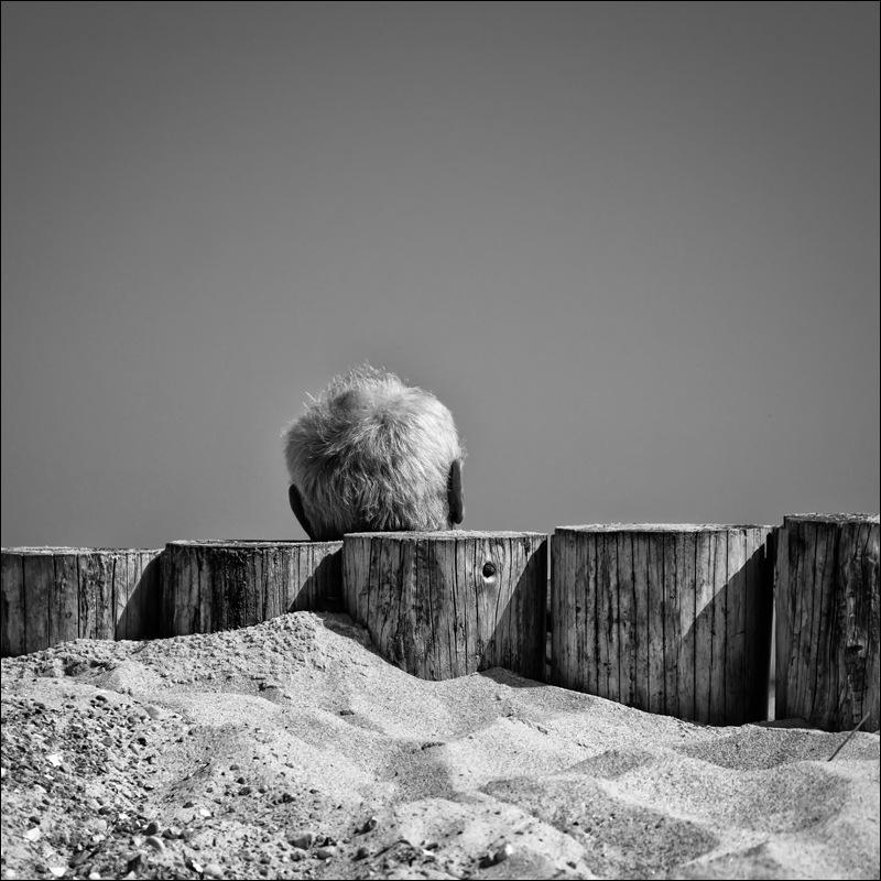 Nicole Oestreich ... - Sommer... Sonne... Sand... und Meer...