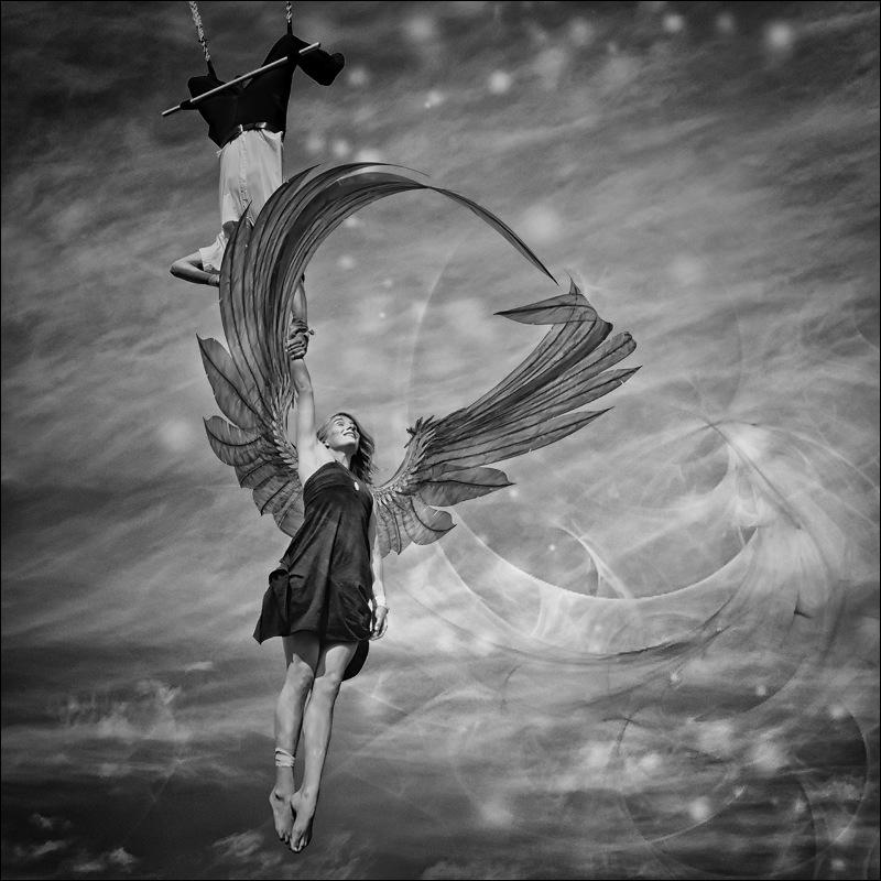 Nicole Oestreich ... - Wings ...