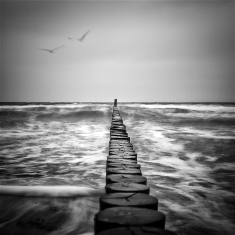 Nicole Oestreich ... - Nur ein Wellenschlag ...
