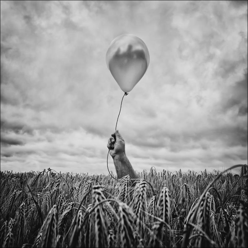 Nicole Oestreich ... - Nur einer dieser Ballone