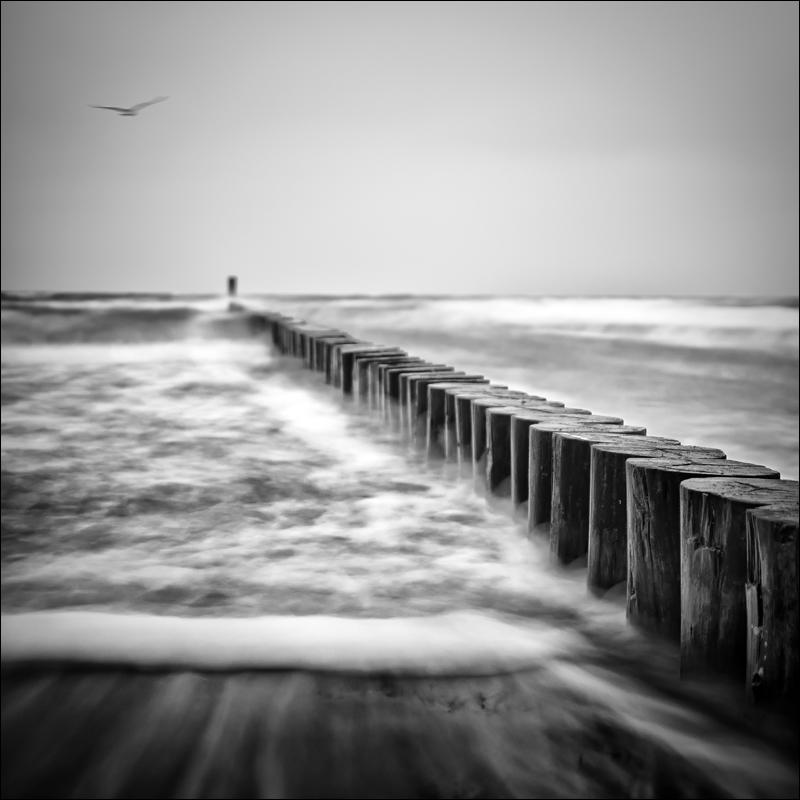 Nicole Oestreich ... - Ein Wellenschlag ...