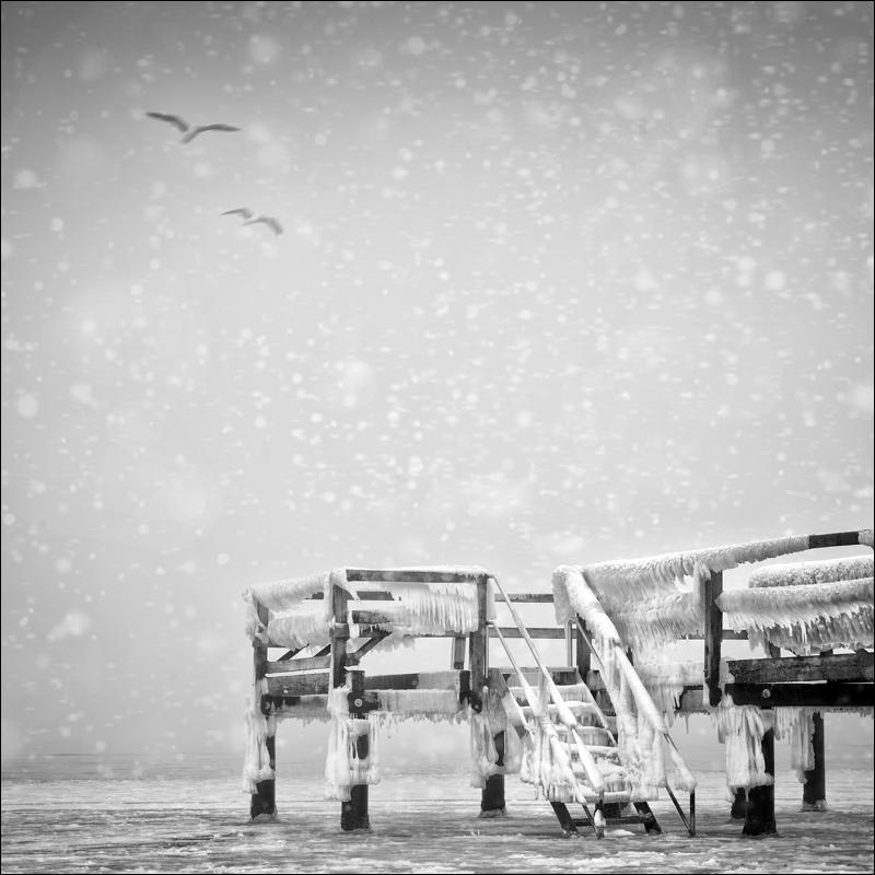 Nicole Oestreich ... - Winterzeit