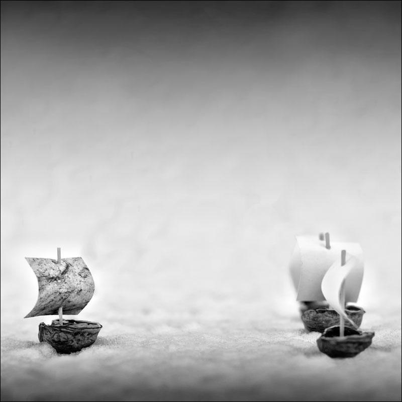 Nicole Oestreich ... - Nussschalenbootler