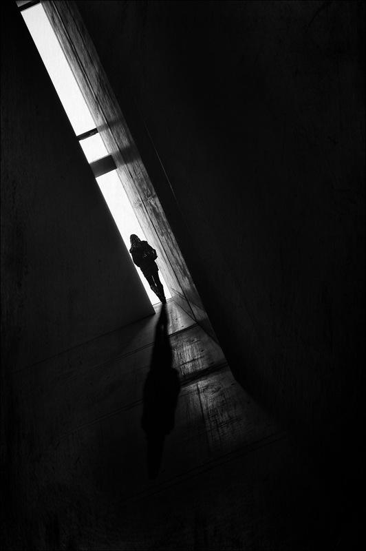 Nicole Oestreich ... - Mehr Schatten als Licht ...