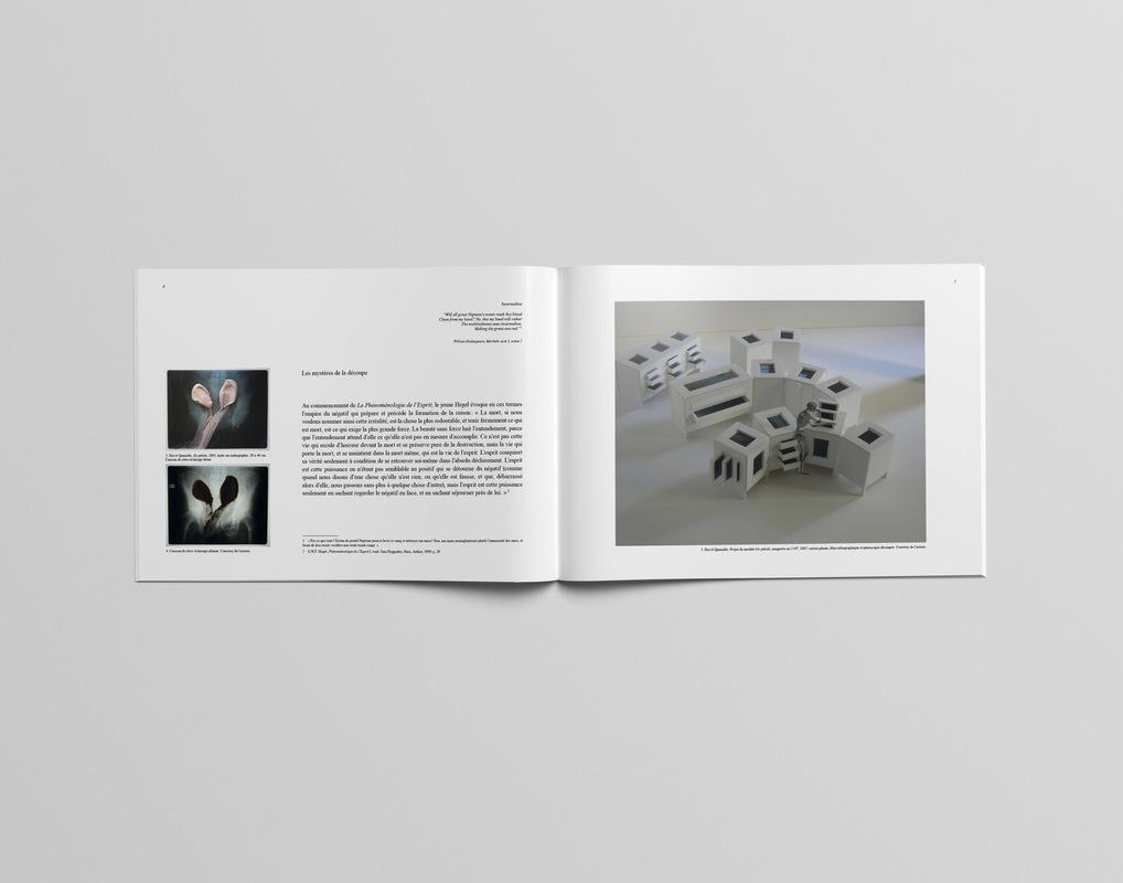 Marie Morane - 2015 -Édition Hervé Quenolle, Galerie Samy Kinge. Réalisation du catalogue publié à loccasion de lexposition Tableau-écorché.