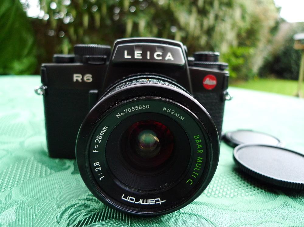 lewys images -