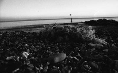 lewys images - Beach debris
