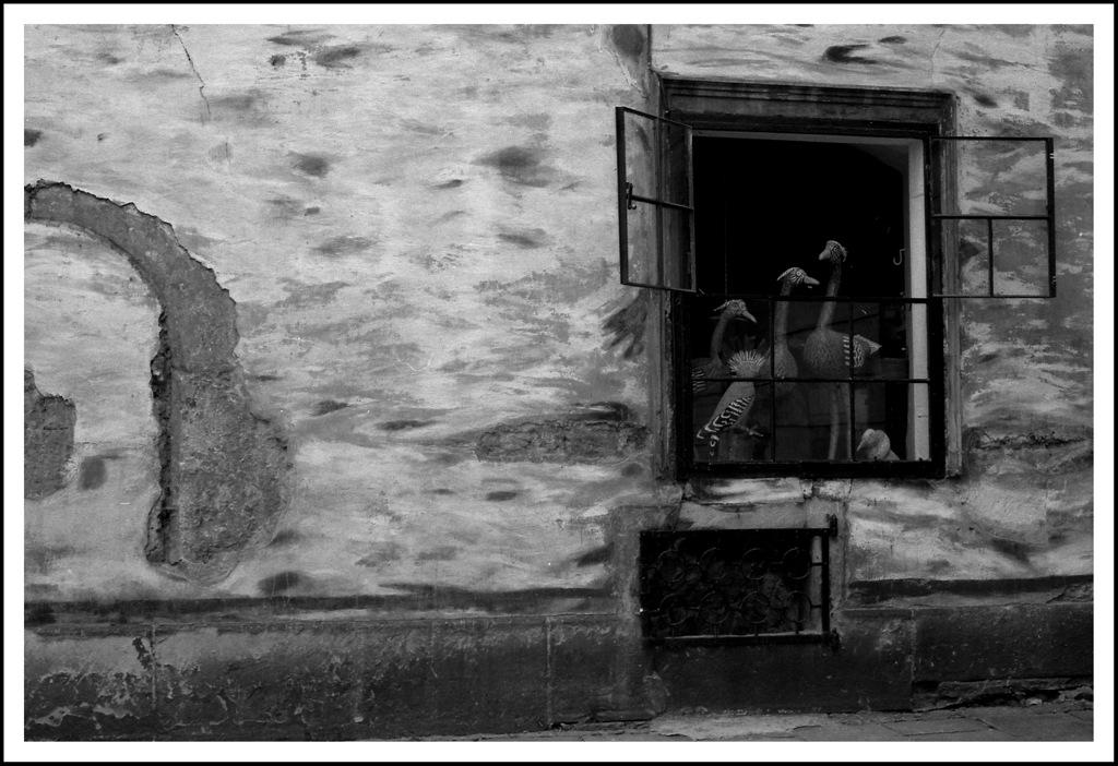 Simon Larson Photography - Shop Window, Poland