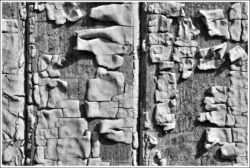 Simon Larson Photography - Cracked Paint, Croft House Door