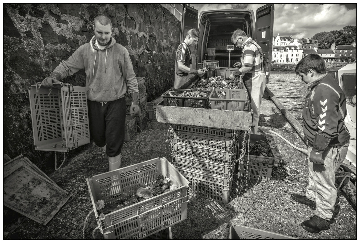 Simon Larson Photography - Sorting The Catch #2, Portree Harbour, Isle of Skye