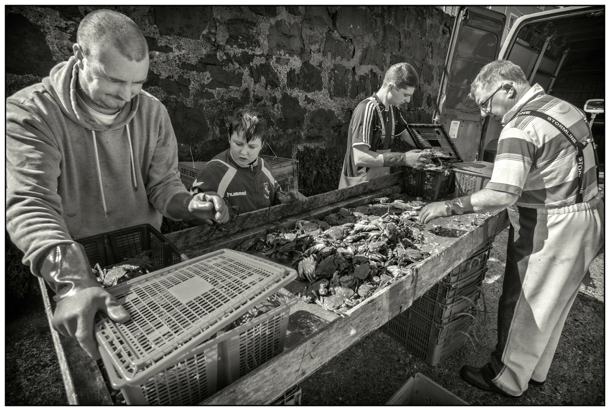 Simon Larson Photography - Sorting The Catch #1, Portree Harbour, Isle of Skye
