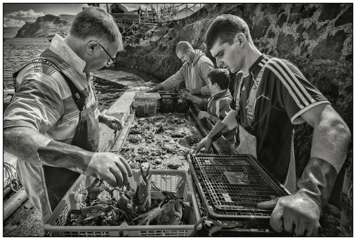 Simon Larson Photography - Sorting The Catch #4, Portree Harbour, Isle of Skye