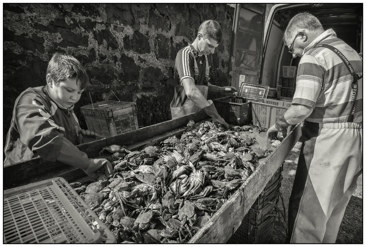 Simon Larson Photography - Sorting The Catch #3, Portree Harbour, Isle of Skye