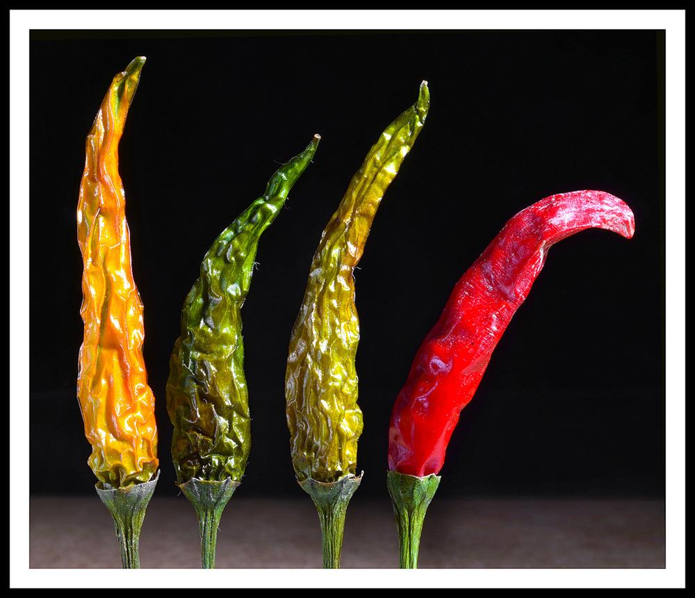 Simon Larson Photography - Chillies