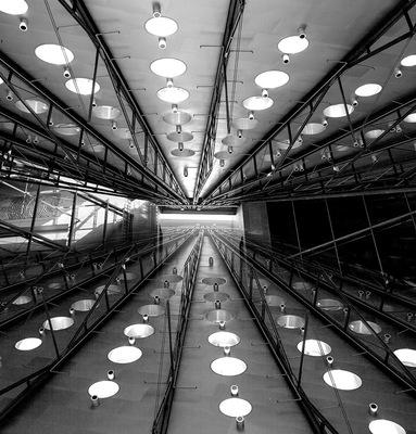 Lukas Jusewicz - Mirror 01
