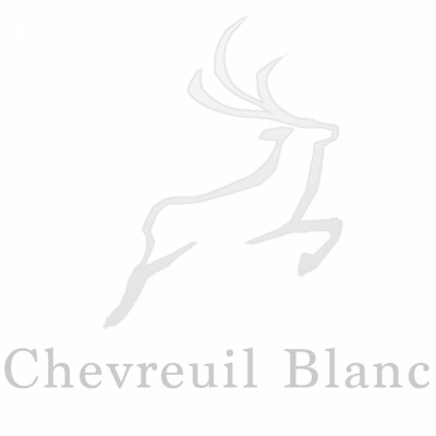 Paul Louise-Julie Portfolio - Chevreuil Blanc