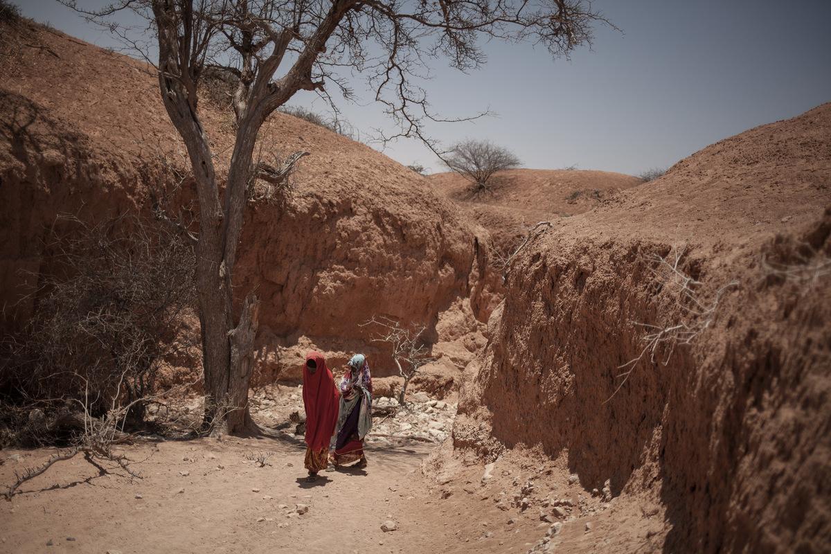 Adrienne Surprenant - Deux ans de faibles pluies du Gu et du Deyr ont asséché le Somaliland. Amina Said, 28, et Fatdua Jama, 34, vont puiser de leau dans une petite source dans le lit de la rivière Adad. Laffluence de déplacés qui viennent sy approvisionner vide la source chaque soir.
