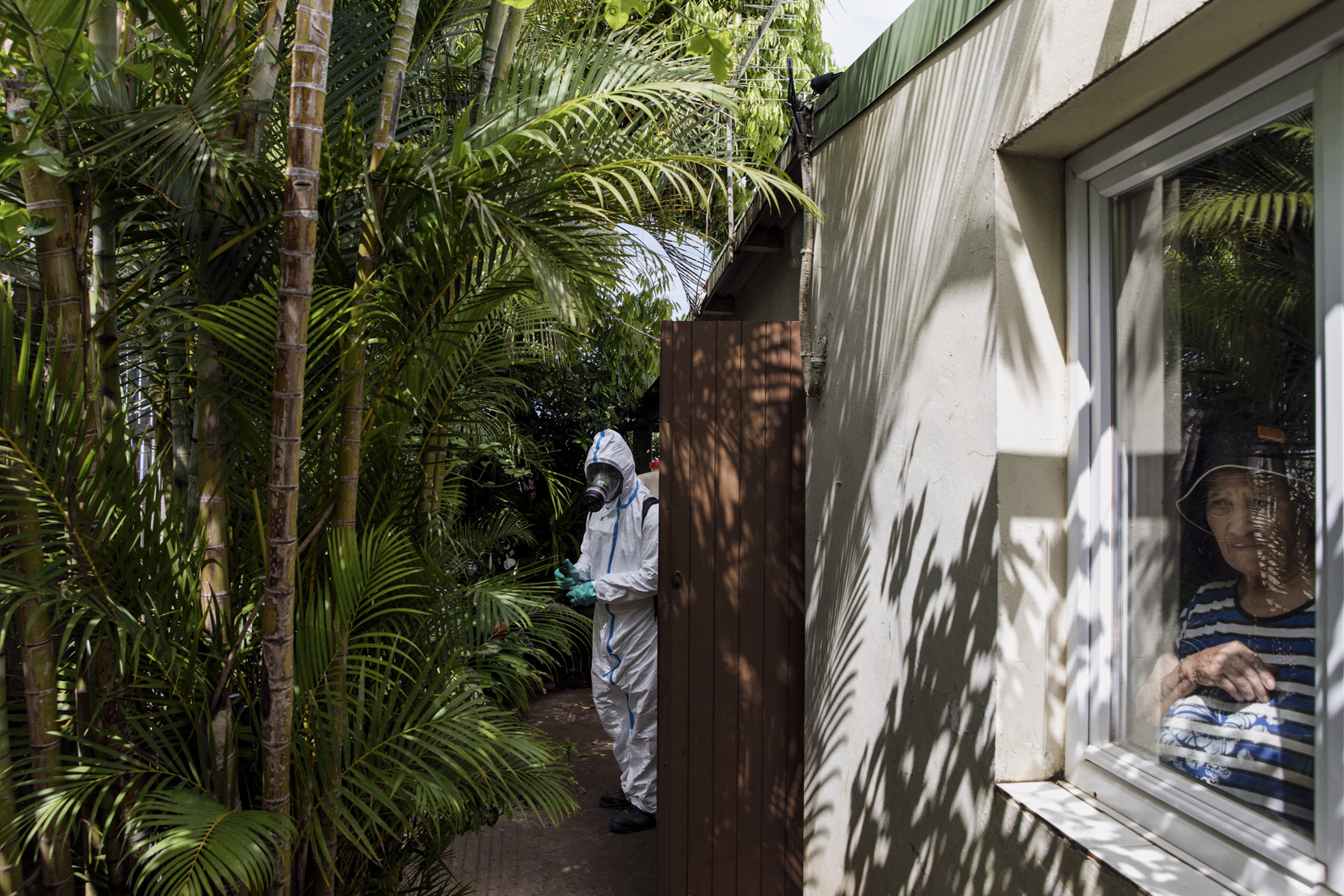 Adrienne Surprenant - 16/11/2018, Piton Saint-Leu, La Réunion (France) — Dominique Tarley, 44 years old, interim with the governmental health agency ARS Indian Ocean, sprays deltaméthrine in gardens of Piton Saint-Leu. A dengue case was confirmed nearby. The ARS sprays small doses of this insecticide in a specific perimeter next to cases, to stop the adult mosquitoes to transmit dengue. They are carefully dosing and testing to avoid creating a resistance to the insecticide amongst the mosquito's population. The ARS Indian Ocean is a French governmental agency leading the response to epidemics of arboviruses or national notifiable diseases in France overseas territories, such as La Reunion.