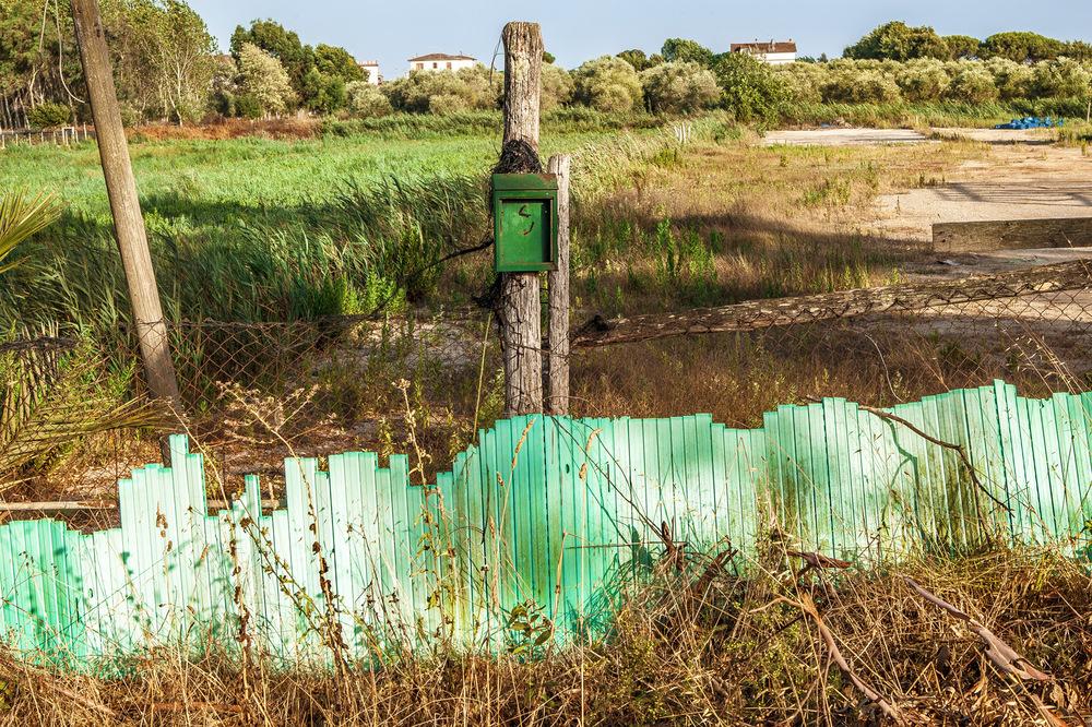 OLIVIA GOZZANO - © un verde a Rio Claro, 2012