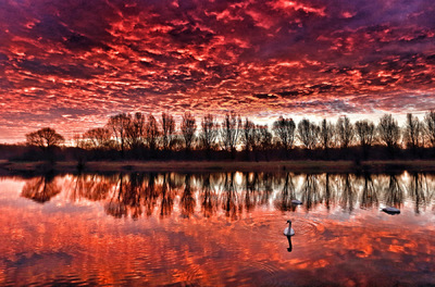 Paul Marriott Photography - Swan lake under a red sky
