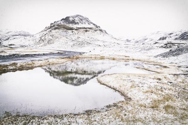 Tanja Barthels Fotografin -
