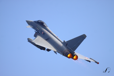 Winedale Photography - Typhoon
