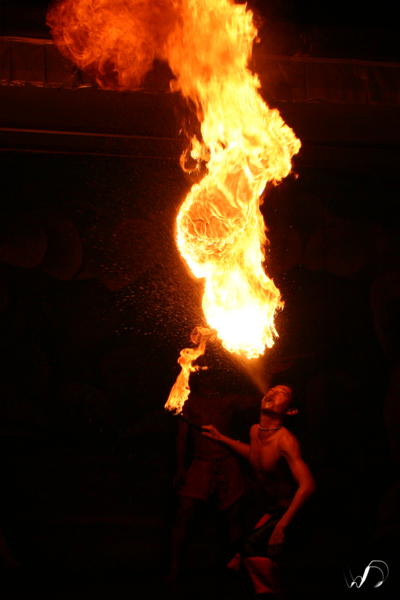 Winedale Photography - Fire breather