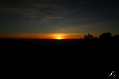 Winedale Photography - Sunrise
