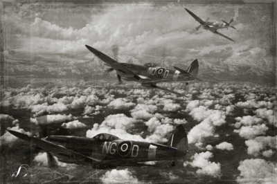 Winedale Photography - Patrolling the skies