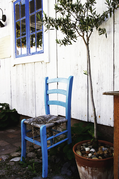 studio svart ateljé vit - Blue chair and olive in terracotta pot