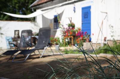 studio svart ateljé vit - Lyme grass front patio