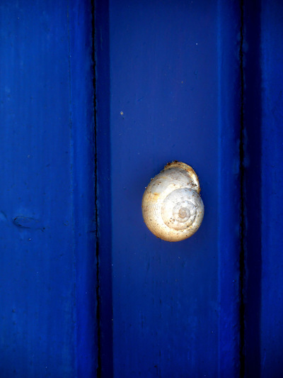studio svart ateljé vit - Snail on a door in Greece