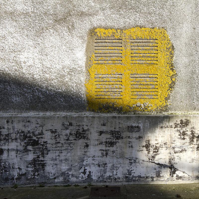 nicole thieffry photographie -