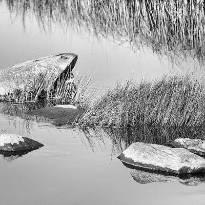 nicole thieffry photographie - au fil de leau