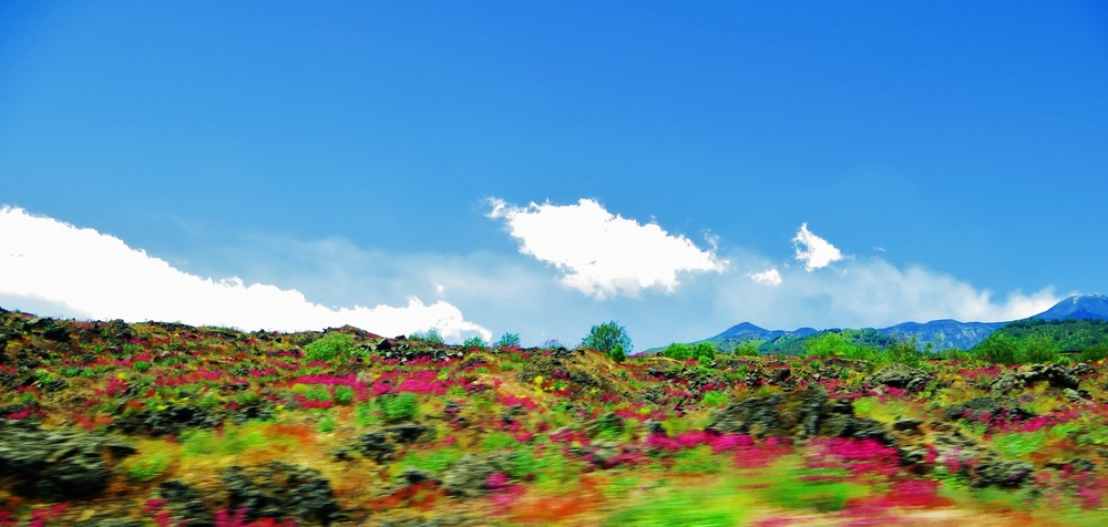COLOUR-AND-SHAPE Photography - Mt Etna, Sicily - June 2014